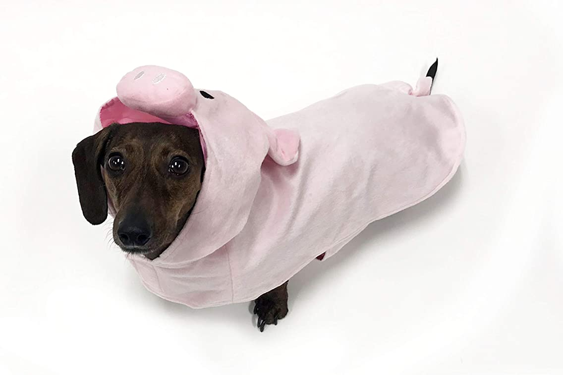 Pig Costume for Small Dogs