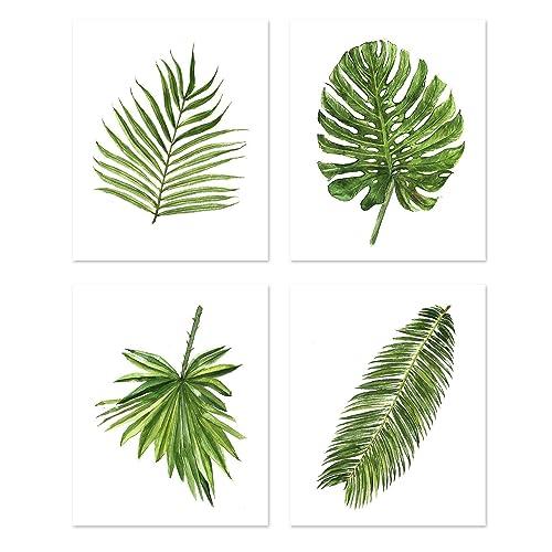 Palm Leaf Prints: Amazon.com