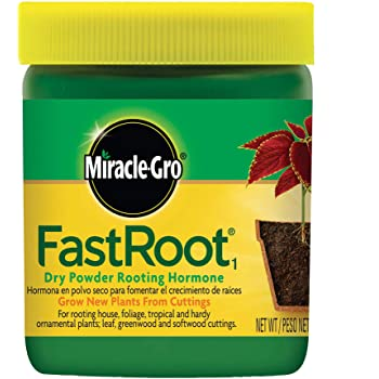 Miracle-Gro FastRoot1 Dry Powder Rooting Hormone 1.25 oz., Houseplant and Succulent Propagation, for Rooting House, Foliage, Tropical, and Hardy Ornamental Plants, 2-Pack
