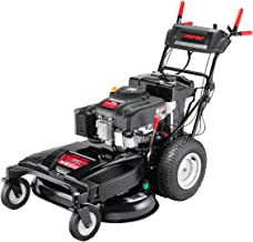 troy bilt wc33