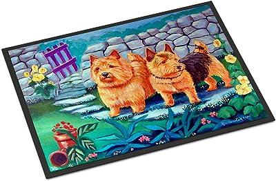 """Caroline's Treasures 7520MAT Norwich Terrier Indoor Outdoor Doormat, 18"""" x 27"""", Multicolor"""
