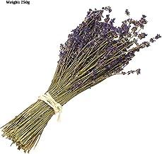 Ramo de flores secas naturales de lavanda – Ramo de lavanda recién cosechado, morado, decoración para bodas, manualidades, hogar, fiestas o regalo por San Valentín