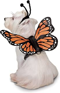 Zack & Zoey Butterfly Glow Harness Costume for Dogs, Large
