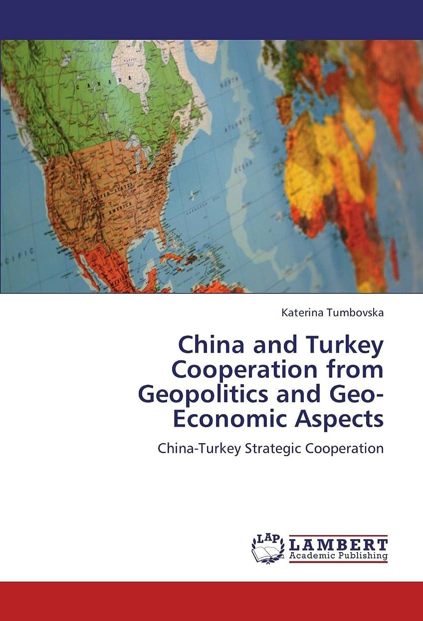 メタン決済速報China and Turkey Cooperation from Geopolitics and Geo-Economic Aspects