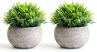 THE BLOOM TIMES 2 Pcs Fake Plants for Bathroom/Home Office Decor, Small Artificial Faux Greenery...