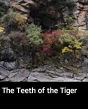 Illustrated The Teeth of the Tiger: Practical educational books