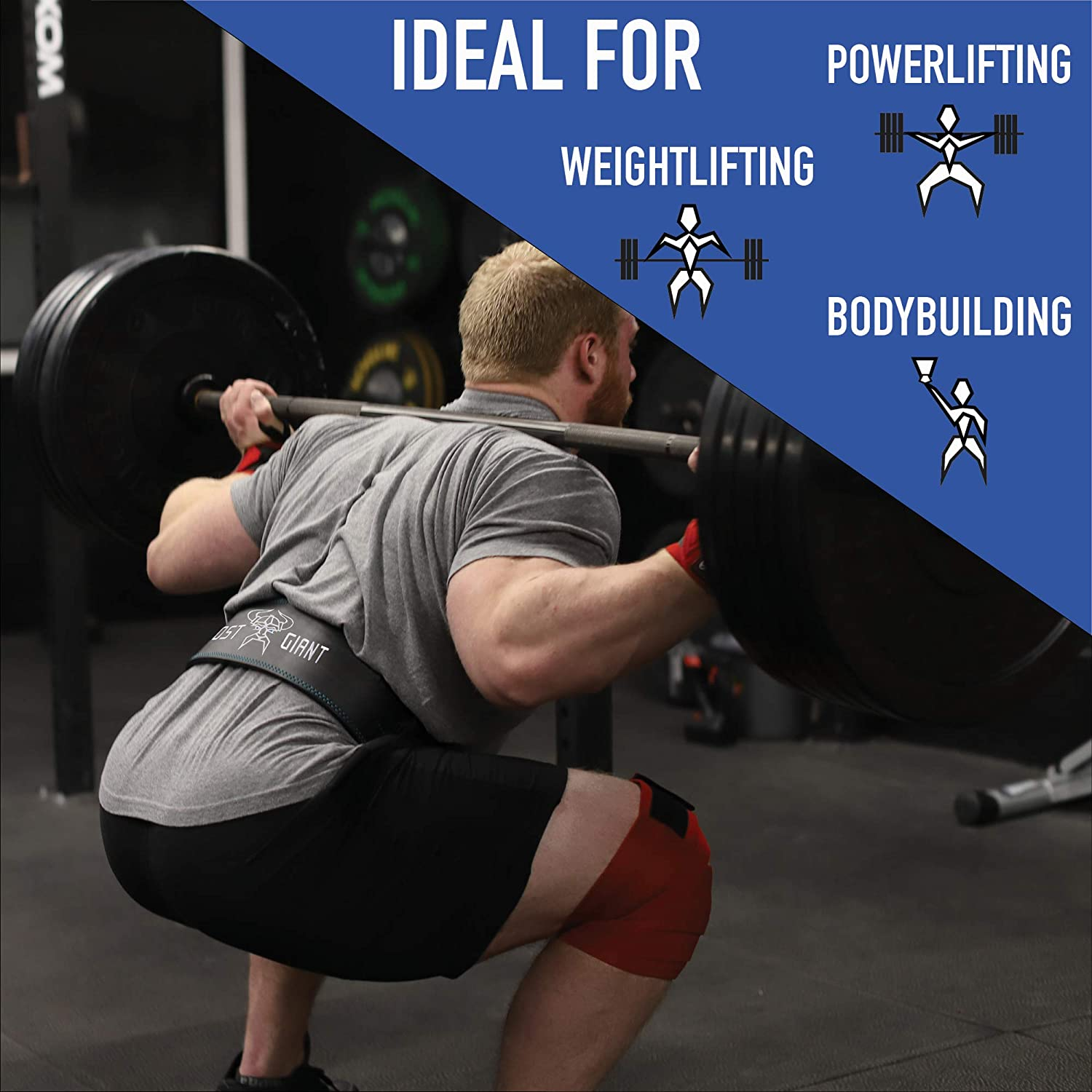 Deadlift Back Support with Lifting Strap Bundle Single Prong Powerlifting Squat ~ Men /& Women Frost Giant Fitness: Leather Weightlifting 10MM Belt