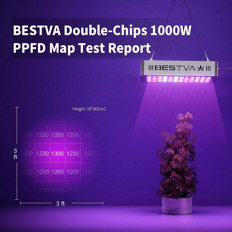BestVA LED Lighting Penetration