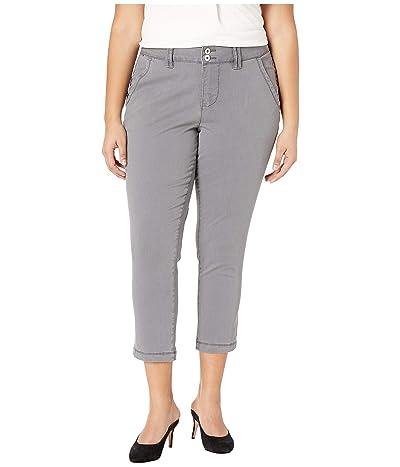 Jag Jeans Plus Size Plus Size Flora Chino Crop (Grey Streak) Women