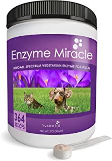 Best digestive enzymes for dogs with pancreatitis Reviews