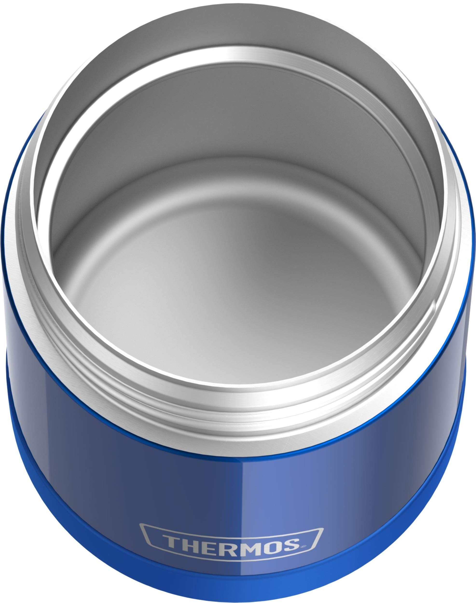 THERMOS FUNTAINER 10 Ounce Stainless Steel Vacuum Insulated Kids Food Jar, Blue