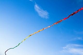 HQ Kites and Designs 126428 Fuzzy Tail Kite, 20m