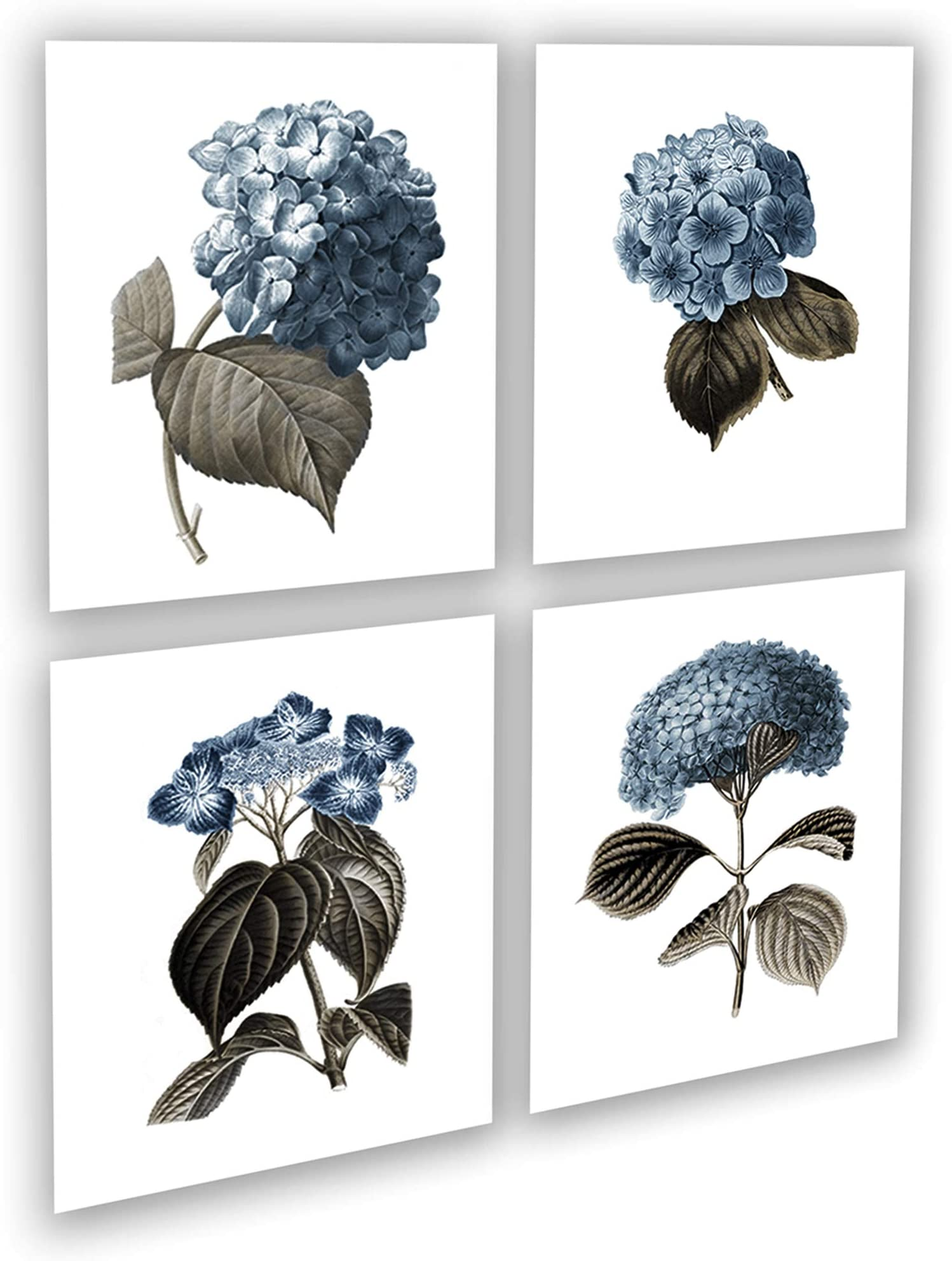 Blue and White Floral Wall Art Art Print of Original Charcoal Drawing Dramatic Botanical Flower Illustration