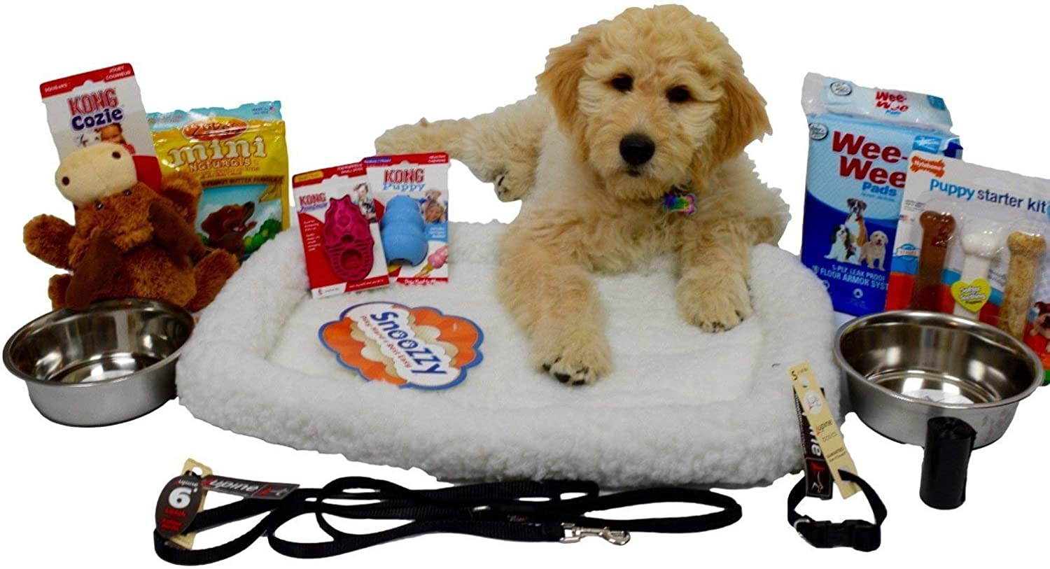 Open Road Goods Puppy Starter Kit Bundle Deluxe Edition in a Gift Box, All Top Name, 5 Star Brands