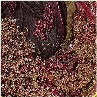 Everwilde Farms - 1 Lb Red Garnet Amaranth Herb Seeds - Gold Vault