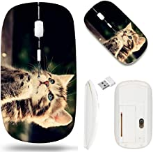 Best wireless mouse cat design Reviews