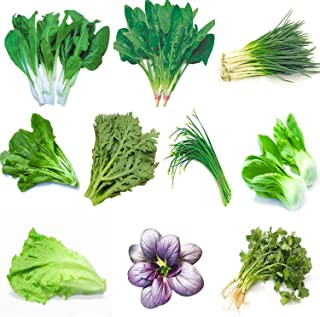 Garden Vegetable Green Organic Chinese Seeds 10 Different Varieties Qty 5000+ for Planting Outside Door for Cooking Dish Soup Taste Good Delicious 100% Non-GMO by Kuting (10 Varieties-A)