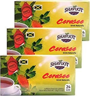 Shavuot Jamaican Cerasee Tea 24 Tea Bags (Pack of 3)