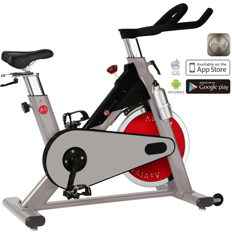 AsVIVA S8 - Bicicletas estáticas y de Spinning para Fitness, Color ...