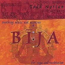 Best todd norian yoga Reviews