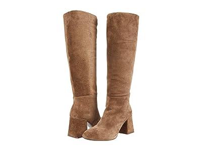 Tory Burch Kira 75 mm Knee Boot (River Rock) Women
