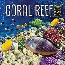 Coral Reef 2020 Calendar
