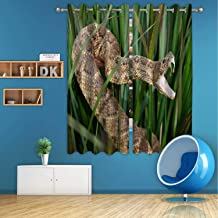 C COABALLA Snake in Long Grass with Mouth Open Showing Venom Modern Hermal Insulated Energy Efficient Blackout Grommet Curtains,for Bedroom/Living Room,2 Panels,55''Wx45''H