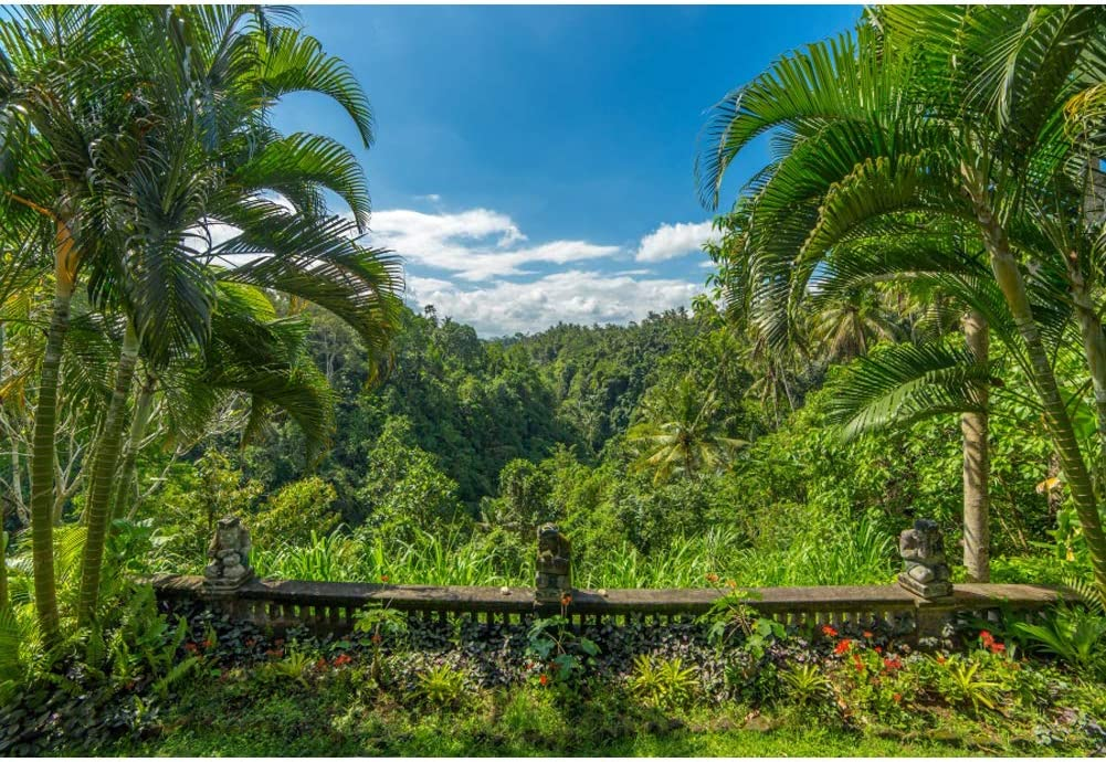 Leowefowa Max 47% OFF 3.5x2.5m Vinyl Tropical Jungle Palm Backdrop Tr Very popular Forest