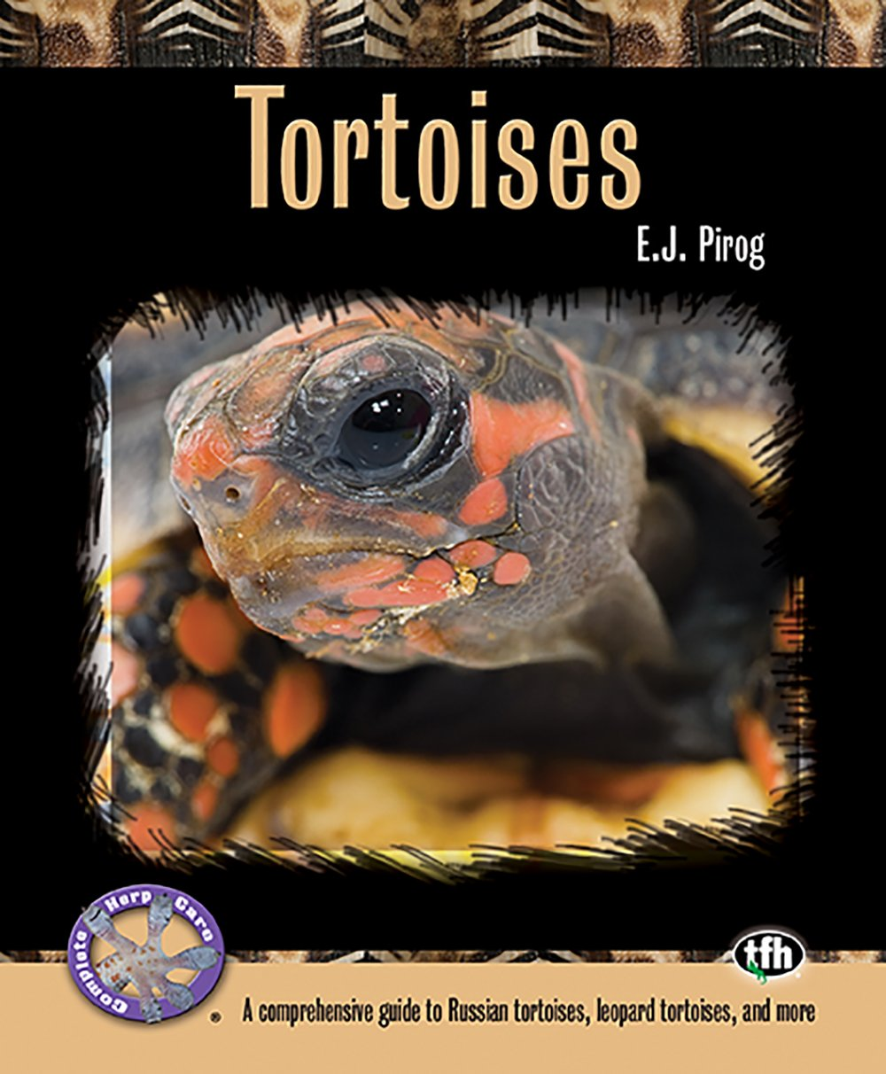 Check Out TortoisesProducts On Amazon!