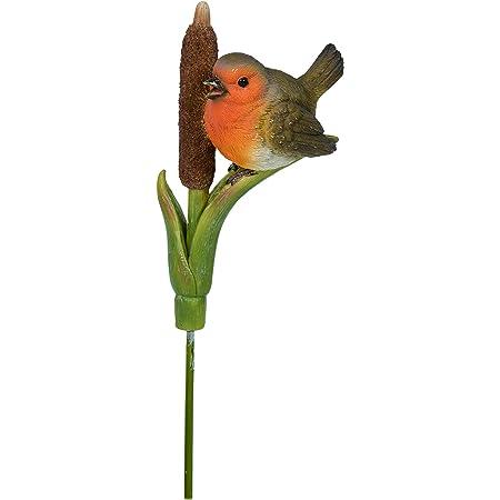 Vivid Arts Plant Pals Robin Plant Pal PLP-102