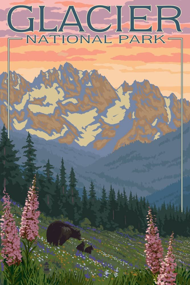Glacier Limited Special Price National Park Montana Bear 14105 Regular dealer and with Cubs Flowers