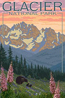Glacier National Park, Montana - Bear and Cubs with Flowers (9x12 Art Print, Wall Decor Travel Poster)