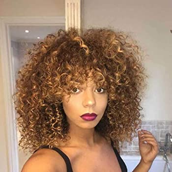 N&T Afro Short Curly Wigs for Black Women Synthetic Hair Ombre Brown Wig (14 inch)