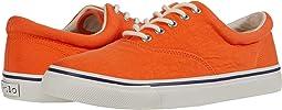 Orange Washed Canvas