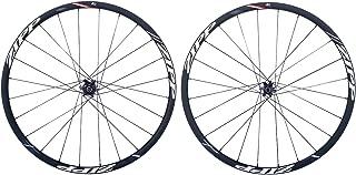 zipp 30 wheelset disc