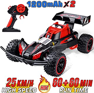 NQD Remote Control Car 2019 Updated 1:16 Scale 2.4Ghz Radio Remote 25Km/h All Terrain RC Car with Two Rechargeable Batteries Electric Toy Car for All Adults & Kids