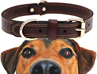 TREVANO Genuine Leather Dog Collar with Alloy Buckle and Double D Rings