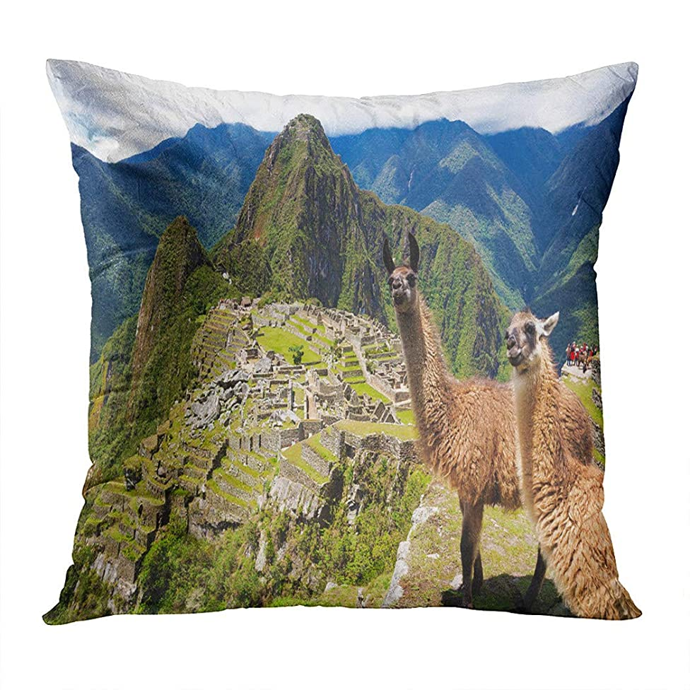 Peyqigo Throw Pillow Cover 18x18 Inch Blue Macchu Llama Historic Lost City Machu Picchu Peru Landscape Andes Polyester Square Cushion Bedroom Couch Sofa Car Decorative Pillowcase