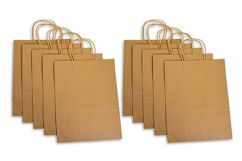 YOHO BUY Brown Kraft Gift Bag with Handles,Birthday Party Shopping Gift Favor Bag Set - 10 Count - Medium