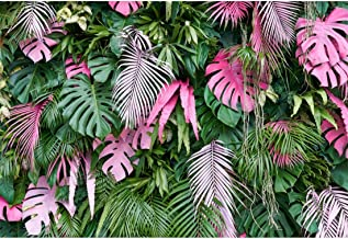 YEELE 7x5ft Tropical Backdrop Safari Theme Forest Vine Jungle Palms Tree Leaves Photography Background Birthday Party Photo Portrait Studio Props