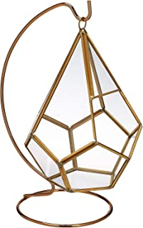 """Circleware 32502 Terraria Glass Plant Terrarium, Gold Frame with Stand, Home Decor Flower Balcony Display Box and Garden Gifts 7"""" x 9"""" Triangle-Gold-7x9"""