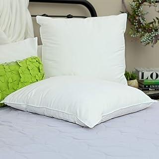 Silk Bedding Direct Pareja DE Almohadas RELLENA DE Seda Hebras Largas de Seda de Morera. 65cm x 65cm. Hipoalergénica. CERTIFICACIÓN: Oeko-Tex. Precio DE Venta BAJO