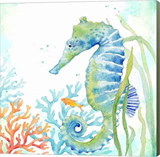 Sea Life Serenade III by Cynthia Coulter Canvas Art Wall Picture, Museum Wrapped with Sage Green Sides, 26 x 26 inches