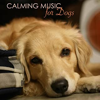 Calming Music for Dogs - Relaxing Music for Dogs and Cats, Peaceful Pet Music Therapy for Dog Anxiety, to Help Them During Fireworks