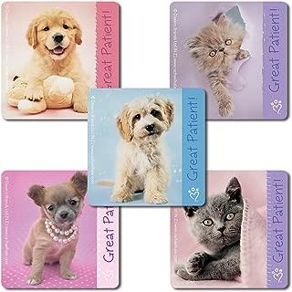 SmileMakers Rachael Hale Patient Stickers - 100 Per Pack