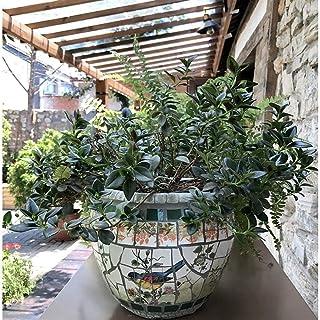 Kotee Medelhavet stor blomkruka handmålade växtkruka spansk stil innergård handmålade keramiska mosaik stora blomma potten...