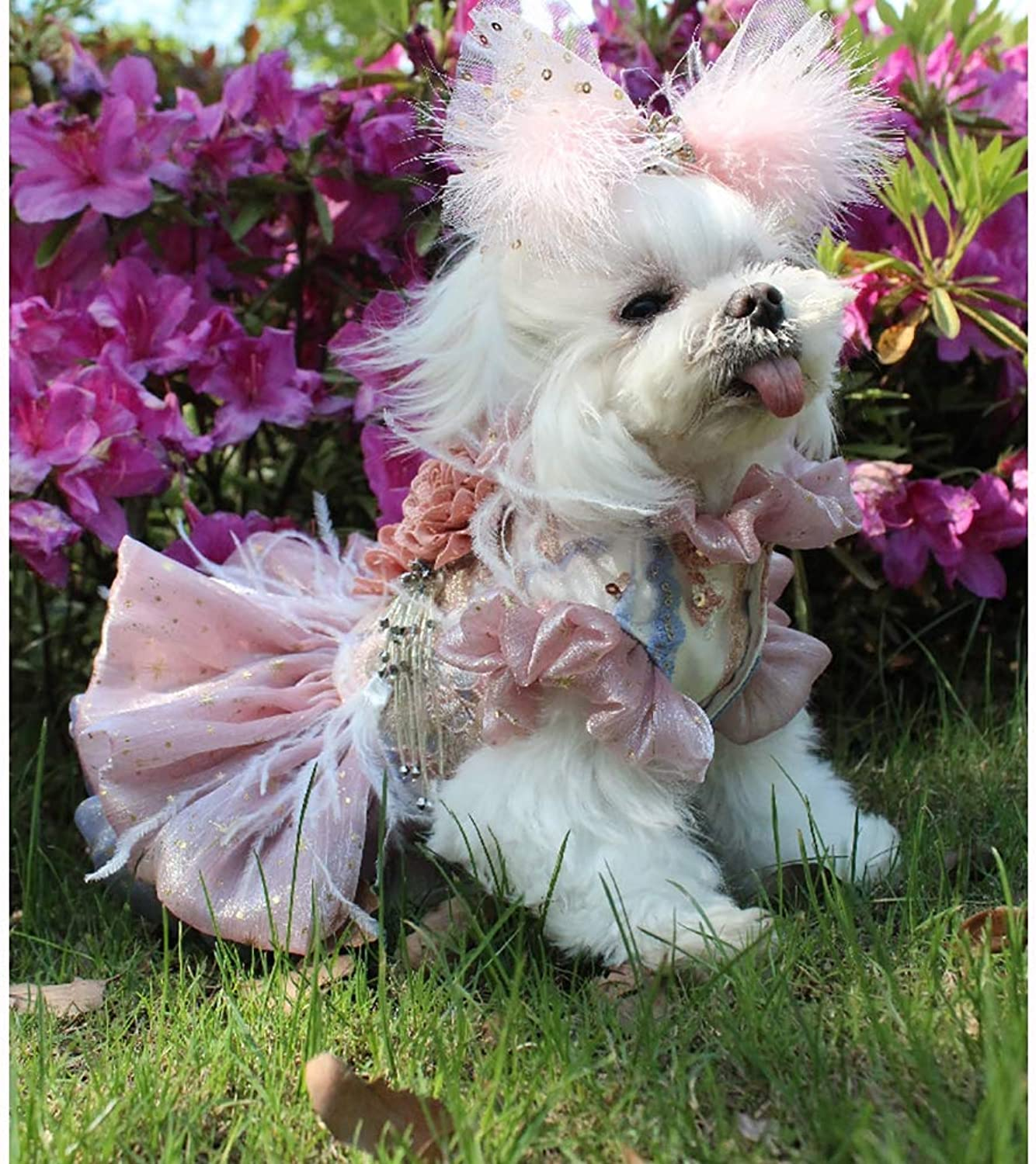 Dog Evening Dress,Puppy Dog Princess Dresses MultiLayered Fluffy Skirt Suitable for Wedding Photography Holiday Party Birthday Party Evening,M