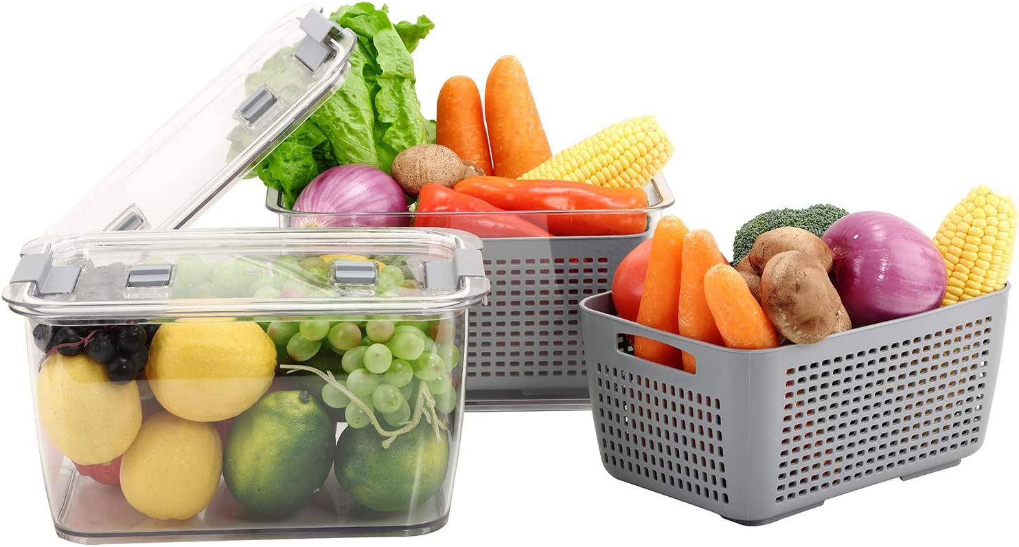 Max 44% OFF REFSAVER Produce Saver Vegetable Fruit for NEW before selling Fr Storage Containers