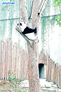 """Journal: Panda sleeping on a tree in the forest: 6"""" x 9"""", 103 pages, For everyone: man, woman, children, teenagers and ent..."""