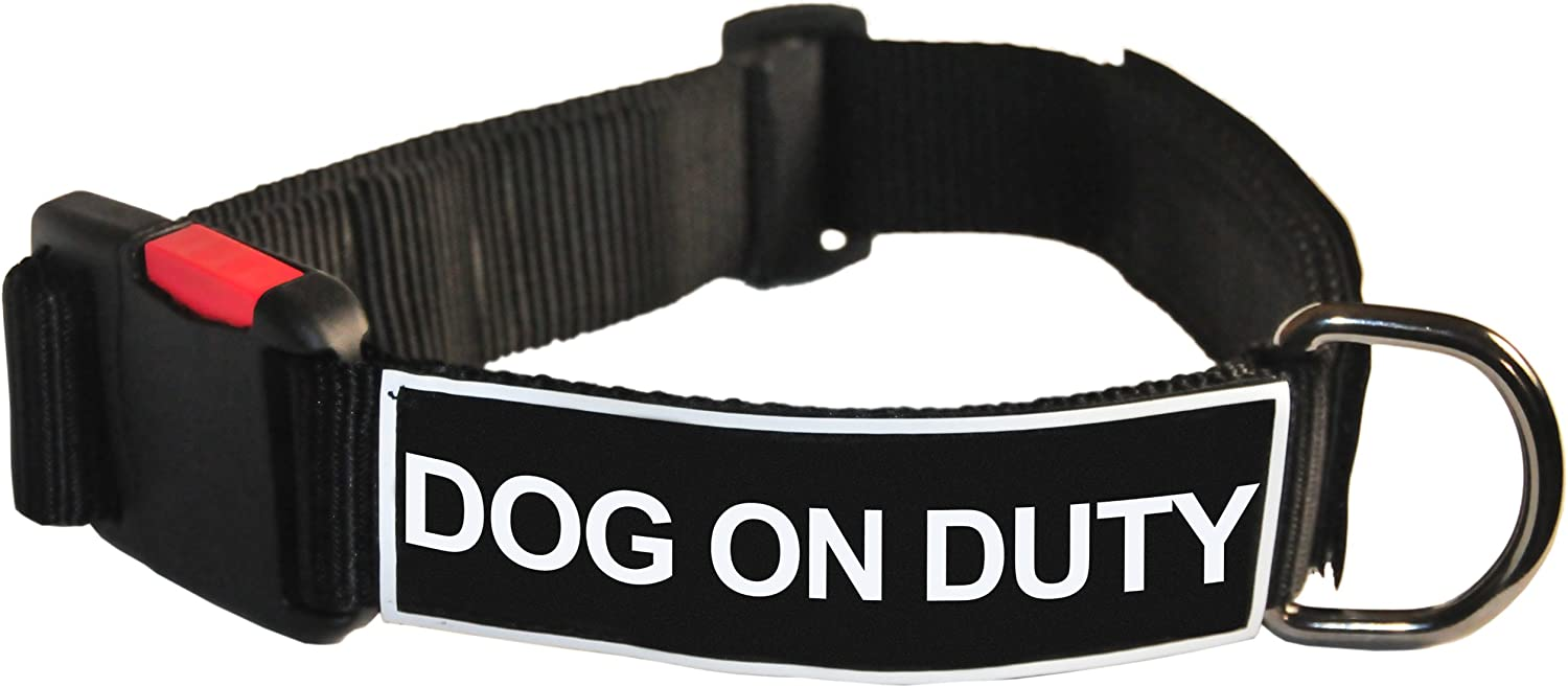 Dean and Tyler Patch Collar , Nylon Dog Collar with DOG ON DUTY Patches  Black  Size  Medium  Fits Neck 21Inch to 26Inch